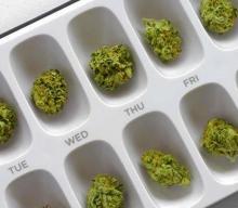 JAK DOZOWAĆ THC W DOMOWEJ KUCHNI ?