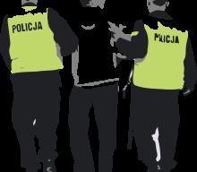 """Wielkie """"sukcesy"""" polskiej policji. Kronika kryminalna [CZERWIEC]"""