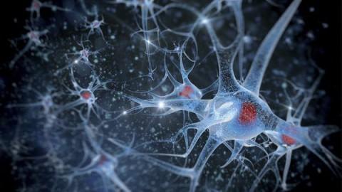 ELEKTRONICZNE NANO POCISKI MIKROMETRYCZNE Z THC W LECZENIU RAKA