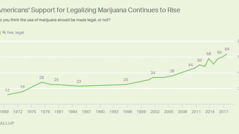 REKORDOWE POPARCIE DLA LEGALIZACJI MARIHUANY W USA