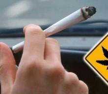 WYKRYCIE OBECNOŚCI METABOLITÓW THC U MŁODYCH OSÓB PRZEKRACZA 25 DNI