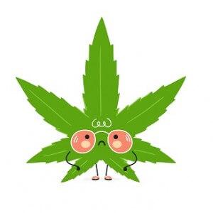 10 NEGATYWNYCH SKUTKÓW palenia marihuany