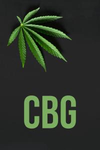 czym jest CBG?
