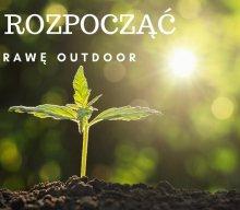 Jak zacząć uprawę outdoor?