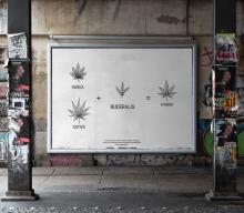 Cannabis Ruderalis – Czarna owca w zielonej rodzinie?
