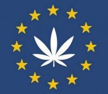 Sędzia Trybunału Sprawiedliwości UE orzekł, że państwa członkowskie nie mogą zakazać importu CBD.