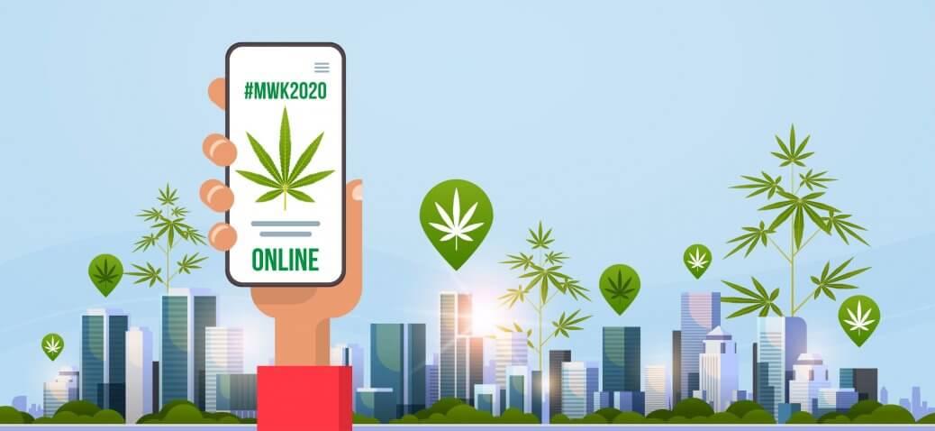 mwk online wolne konopie