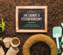 Zadbaj o system korzeniowy swoich roślin