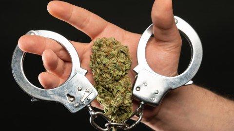 """24-latka idzie do więzienia za handel, suszu nie znaleziono. Dowód? ZEZNANIA """"kolegi""""!"""