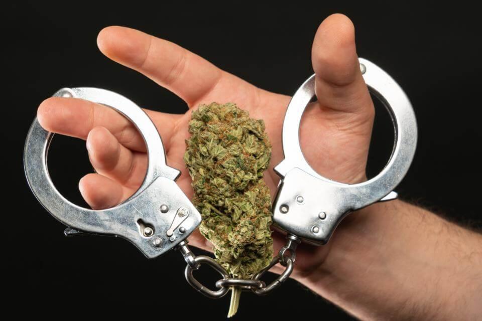 24-latka idzie do więzienia za handel, suszu nie znaleziono. Dowód? ZEZNANIA