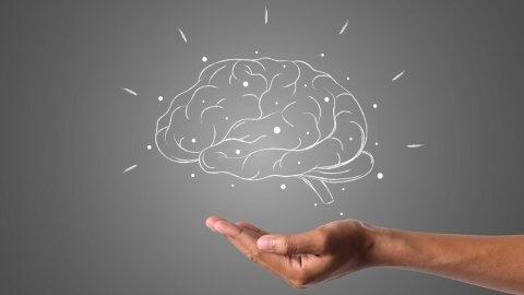 Kannabinoidy i ich wpływ na komórki mózgowe.
