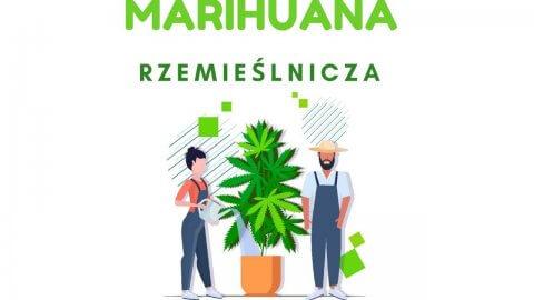 Co to jest marihuana rzemieślnicza?