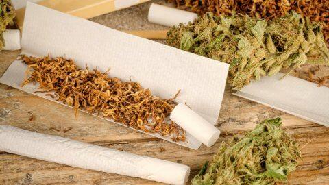 Palacze konopi narażeni na mniej substancji toksycznych niż palacze tytoniu