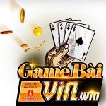 Zdjęcie profilowe gamebaivinwin